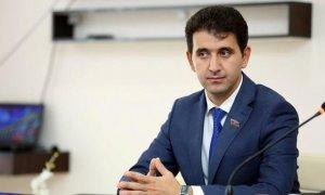Milli Məclisin deputatı AFFA-nı tənqid etdi - FOTO